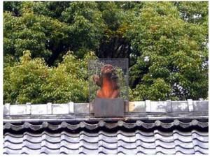 赤山禅院猿